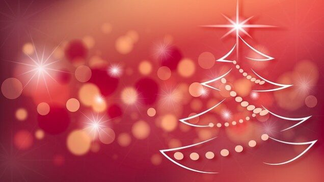 christmas-tree-2909020_640
